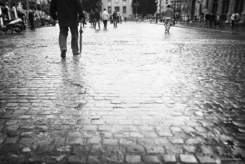 Seville After the Rain